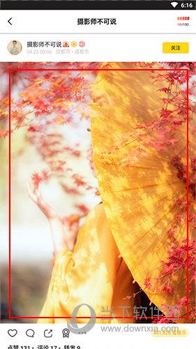 像素蜜蜂图片界面
