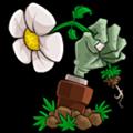 植物大战僵尸95版 for mac 中文免费版