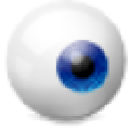 exe或dll文件结构函数过程列表查看器 V1.0 绿色免费版