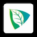 云茶直播 V1.0.6 安卓版