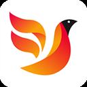 火鸟门户 V4.2 安卓版