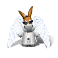 emule电驴国际版 V0.50b 绿色无限制版