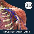 解剖大师 V1.0.0 官方版