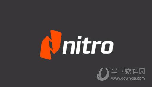 Nitro Pro 13