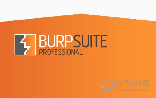 Burp Suite2020