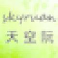 skyruanboy(网络扫描工具) V1.0 绿色免费版