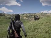 荒野大镖客2怎么抓野马 驯服方法介绍