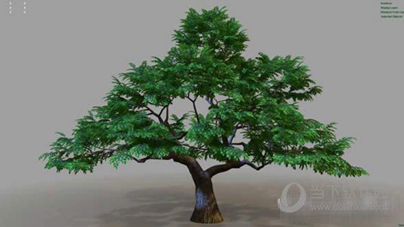 Gumroad Easy Treez