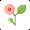 春风国学坞 V1.0 安卓版