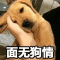 无奈狗子表情包 +27 免费版