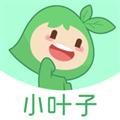 小叶子智能陪练PC版 V7.0.1 官方最新版