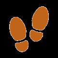 Fiteprint(网页历史浏览记录插件) V1.0.3 Chrome版