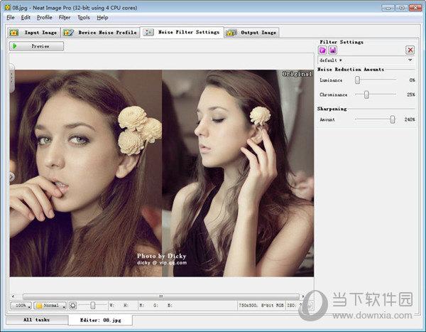Neat Image Pro