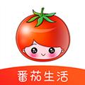 番茄生活 V1.3.8 安卓版