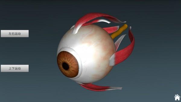 人体解剖学图集APP破解版 V3.9.8 安卓免费版截图3