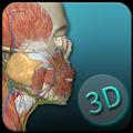 人体解剖学图集APP破解版 V3.9.8 安卓免费版