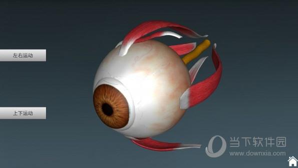 人体解剖学3D互动图集破解版免费下载
