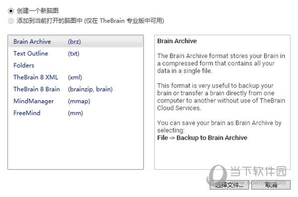 TheBrain12中文版