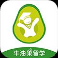 牛油果留学 V1.11.3 安卓版