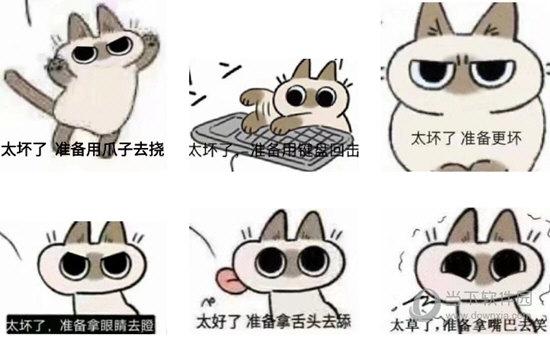 yamanobejin暹罗猫表情包