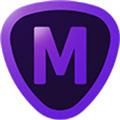 Topaz Mask AI中文破解版 V1.3.8 最新免费版