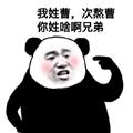 你姓啥啊兄弟表情包 +9 熊猫头版