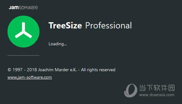 TreeSize Professional8破解版