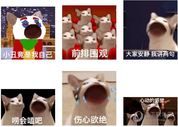 POPCAT表情包
