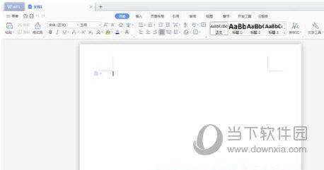 WPS Office2021专业增强版