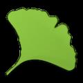 Gingko(非线性卡片式写作软件) V2.4.5 免费版