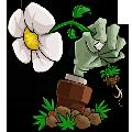 植物大战僵尸崇明人家123强化版96版 PC无冷却版