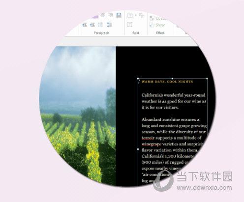 福昕高级PDF编辑器会员破解版