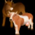 南方牛年运程2021注册版 V2.3.1 绿色免费版