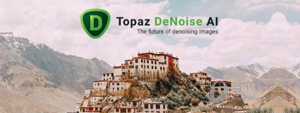 Topaz DeNoise AI汉化破解版