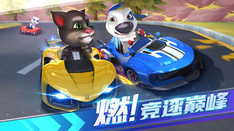 汤姆猫飞车免内购版 V1.0.648.28 安卓版截图5