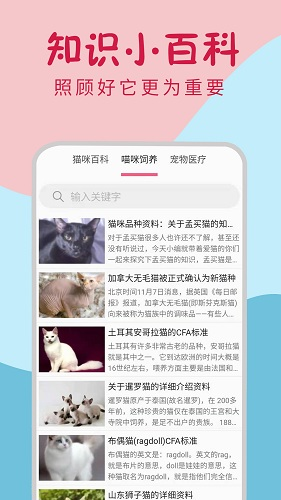 小猫翻译器 V1.0.0 安卓版截图3