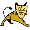 tomcat10