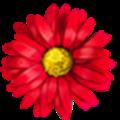 鲜花猫破解版最新版 V7.0 安卓免费版