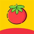 番茄影视app下载安装 V1.1.7 安卓最新版