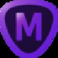Topaz Mask AI汉化包 V1.2.4 免费版