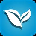 叶子tv复活版 V1.7.6 安卓版