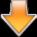 Flash Video Downloader Pro