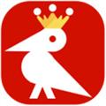 啄木鸟下载器破解版 V2021.04.07 吾爱破解版