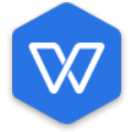 WPS中央最高行政版 V2021 永久激活版