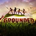 grounded联机补丁 V1.0 绿色免费版