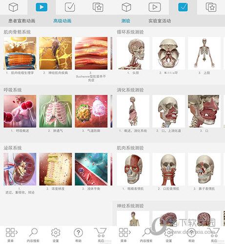 人体解剖学图谱电脑版