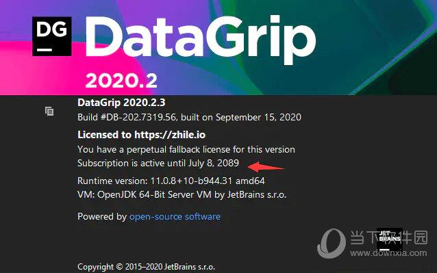 jetbrains datagrip 2020.2.3破解版