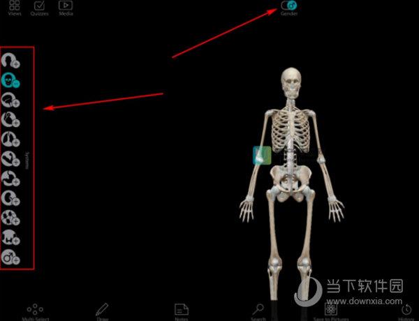 Human Anatomy Atlas电脑版