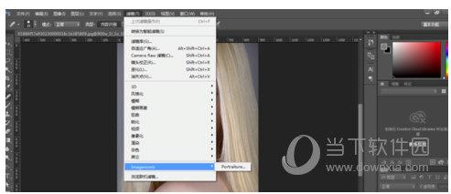 Portraiture完美中文注册版