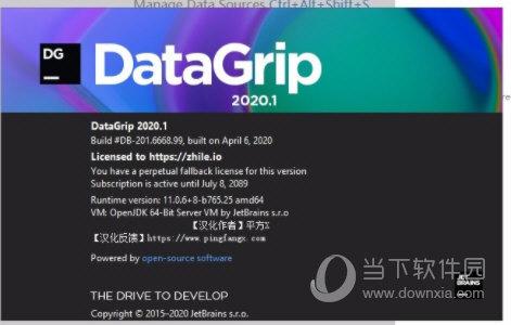 jetbrains datagrip汉化包